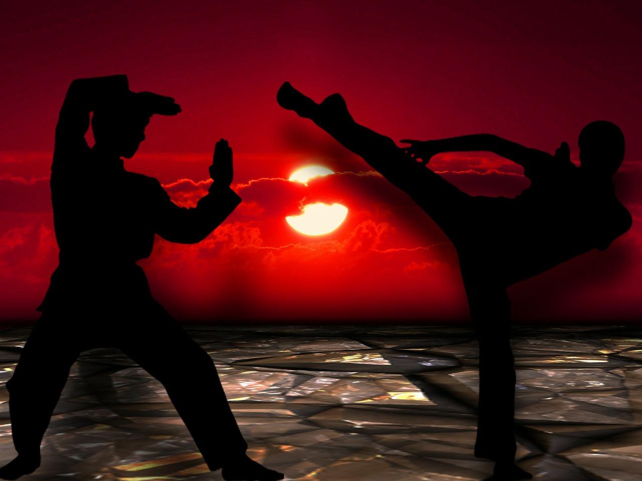 Reprise du kung fu !